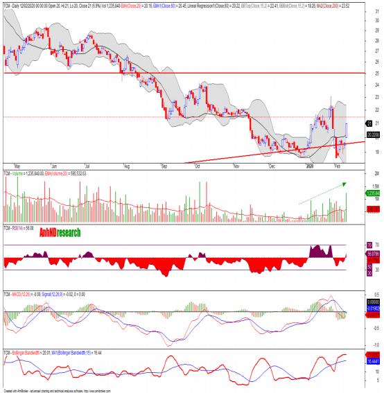Cổ phiếu tâm điểm ngày 14/2: SJS, TIG, VTK, TCM - Ảnh 3.