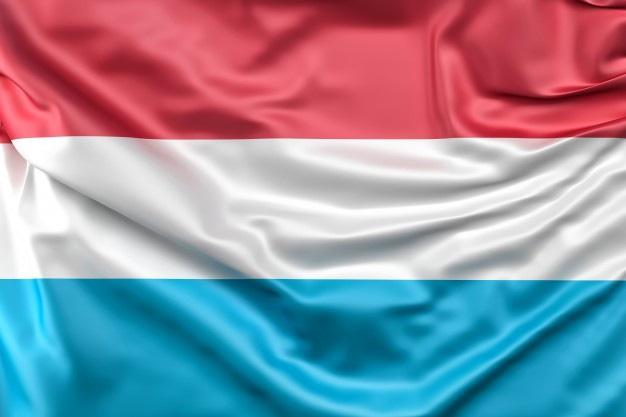 Hiệp định tránh đánh thuế hai lần giữa Việt Nam và Luxembourg - Ảnh 1.