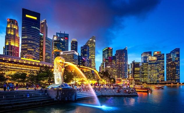 Tháng 1/2020, Singapore rót lượng vốn khổng lồ vào Việt Nam - Ảnh 1.
