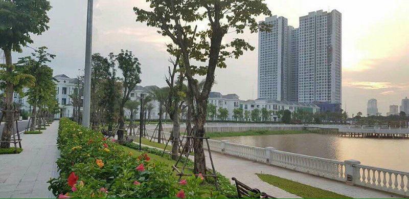 Hàng loạt tổ chức, cá nhân nước ngoài được cấp sổ đỏ tại nhiều chung cư ở Hà Nội - Ảnh 1.