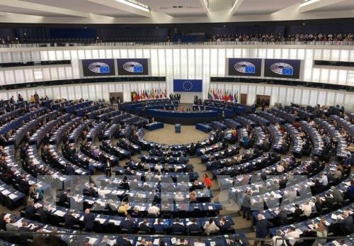 EVFTA: Doanh nghiệp châu Âu và các bước đi nhập cuộc - Ảnh 1.