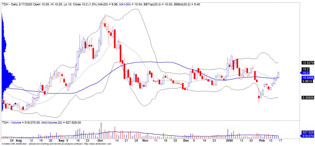 Cổ phiếu tâm điểm ngày 19/2: VIC, DLG, TDH - Ảnh 3.