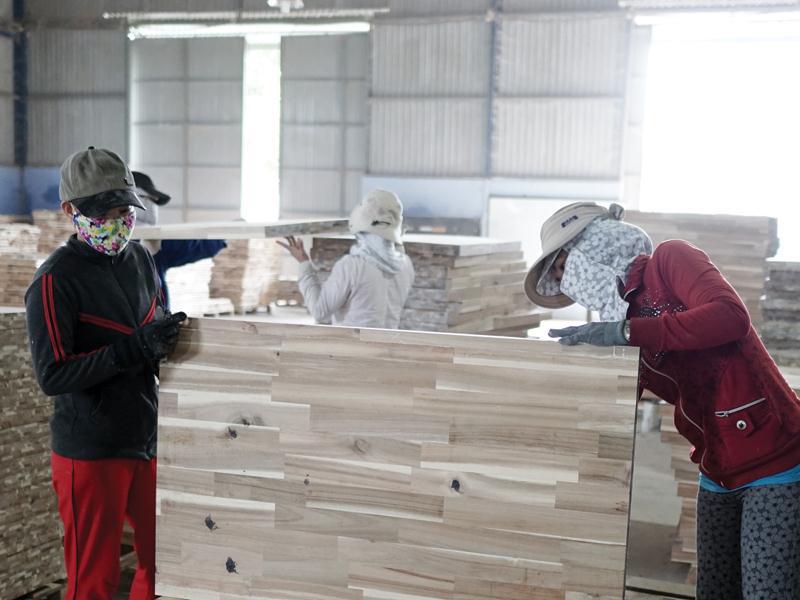 Ngành gỗ hưởng lợi khi nhập nguyên liệu từ EU - Ảnh 1.