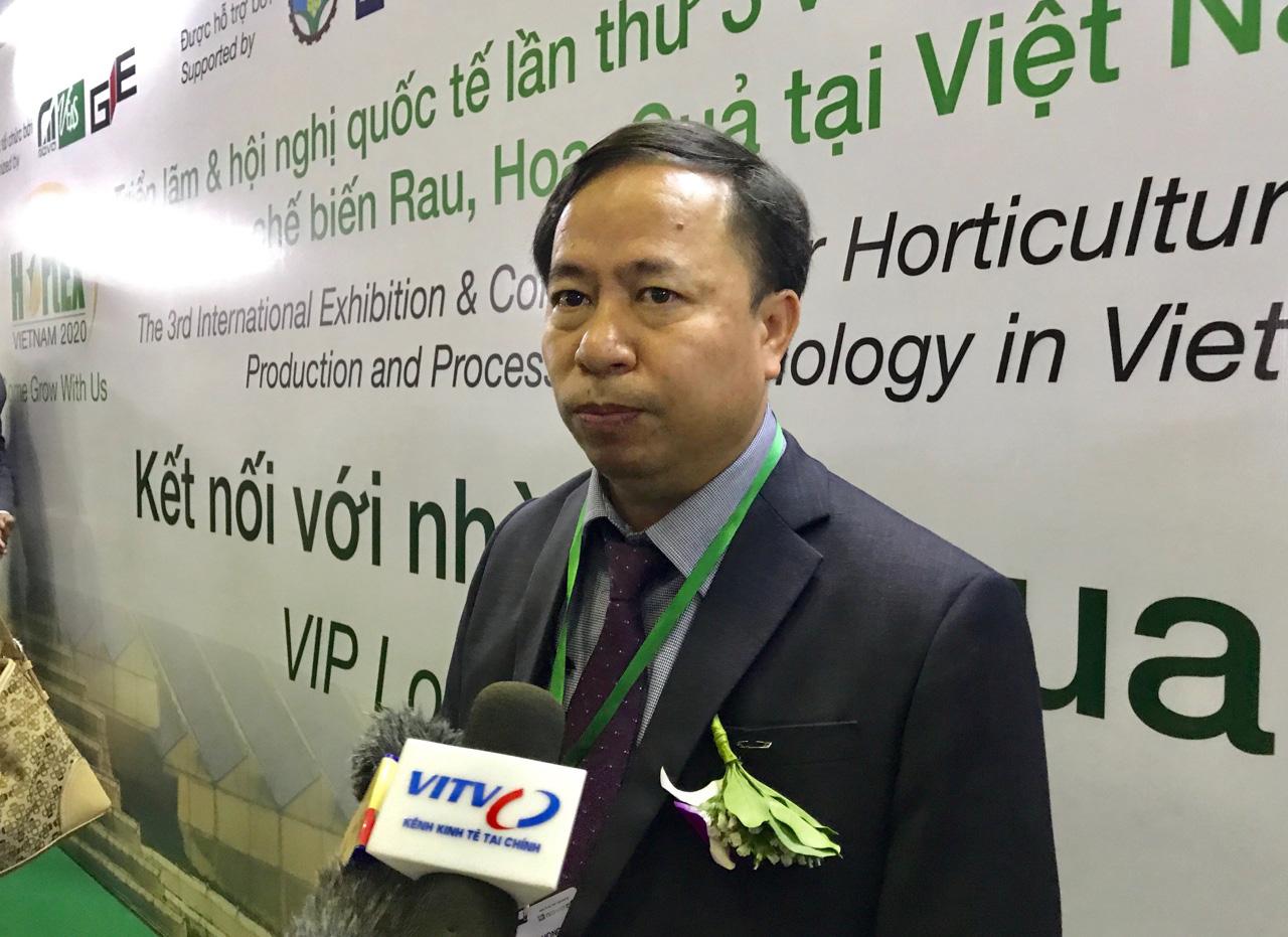 Đẩy mạnh xuất khẩu rau quả sang Thái Lan, Mỹ, EU…để giảm áp lực thị trường Trung Quốc bị ngưng trệ do dịch Covid-19 - Ảnh 1.