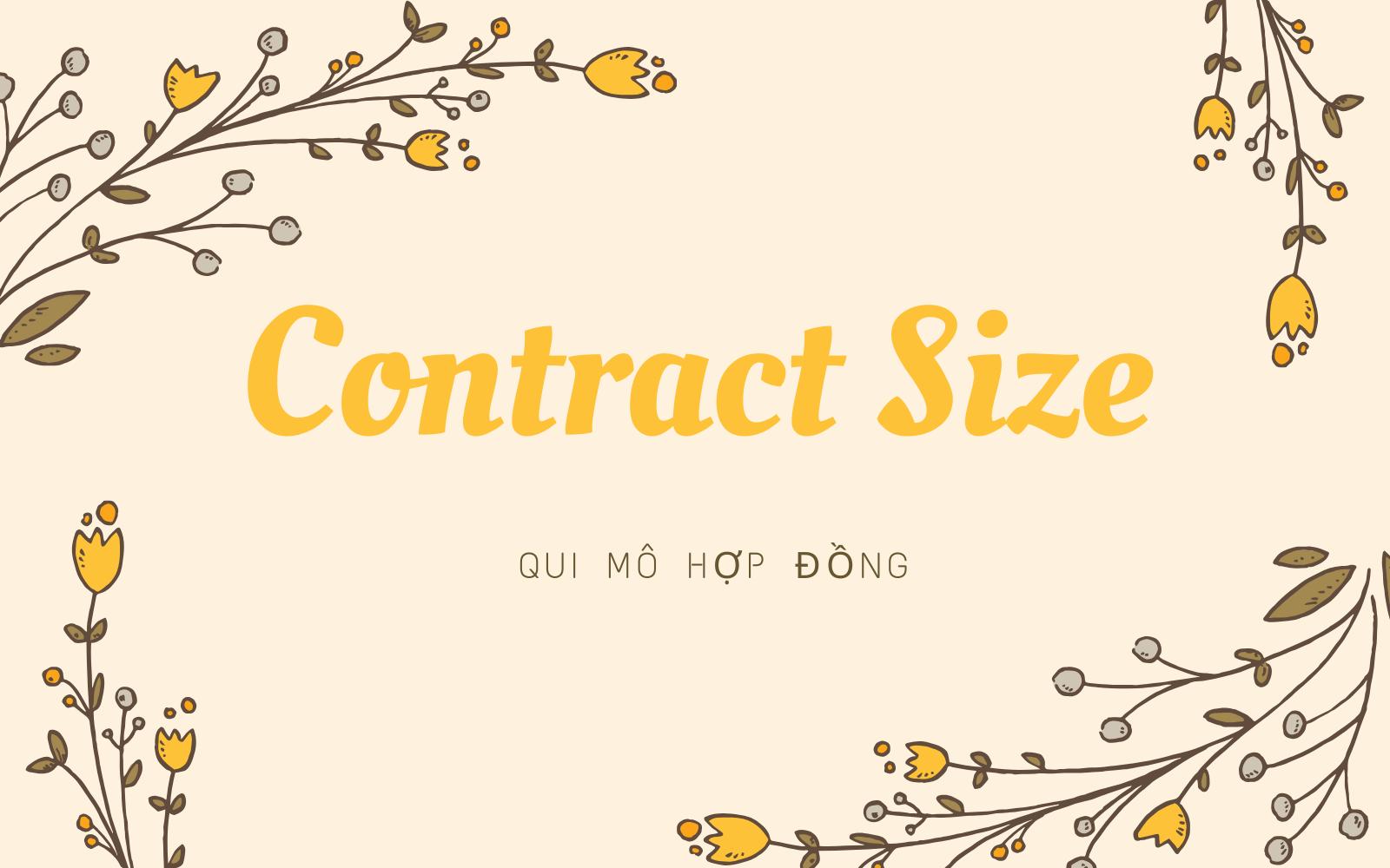 Qui mô hợp đồng (Contract Size) là gì? Hiểu về qui mô hợp đồng - Ảnh 1.