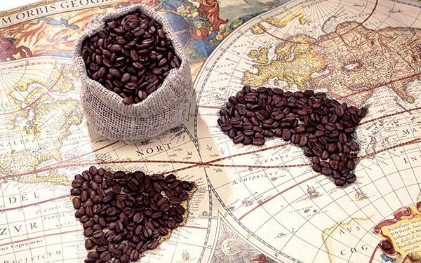 Xuất khẩu cà phê tại các khu vực sản xuất chính nhìn chung giảm trong 3 tháng đầu năm 2019 - 2020 - Ảnh 1.
