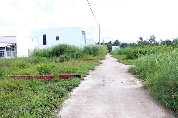 TP HCM kiến nghị chuyển đổi chức năng gần 385 ha đất dự trữ phát triển - Ảnh 1.