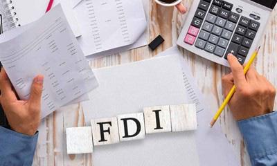 Chuyên gia dự đoán FDI toàn cầu có thể giảm tới 15% do dịch COVID-19 - Ảnh 1.