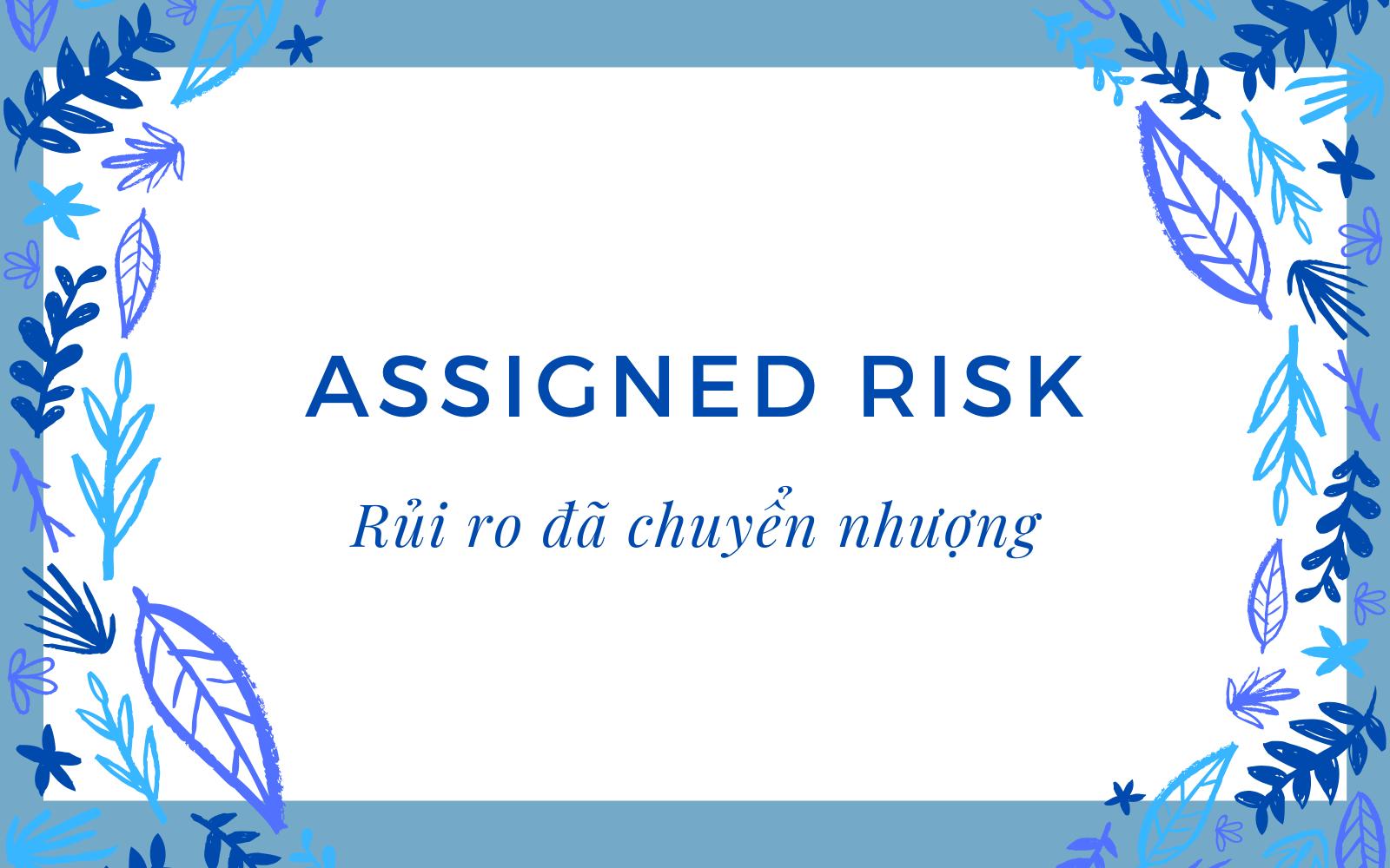 Rủi ro đã chuyển nhượng (Assigned Risk) là gì? Nội dung về Rủi ro đã chuyển nhượng - Ảnh 1.