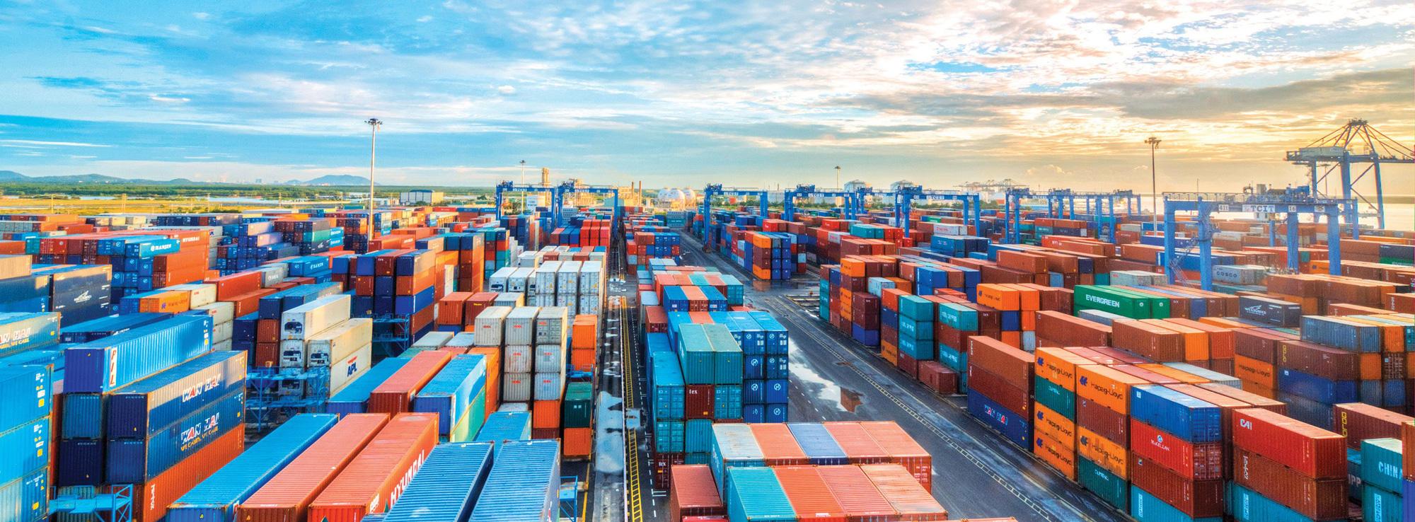 Chi phí logictics gây áp lực cho cảng Cái Mép - Thị Vải, Bà Rịa - Vũng Tàu đẩy nhanh các dự án hạ tầng hỗ trợ - Ảnh 1.