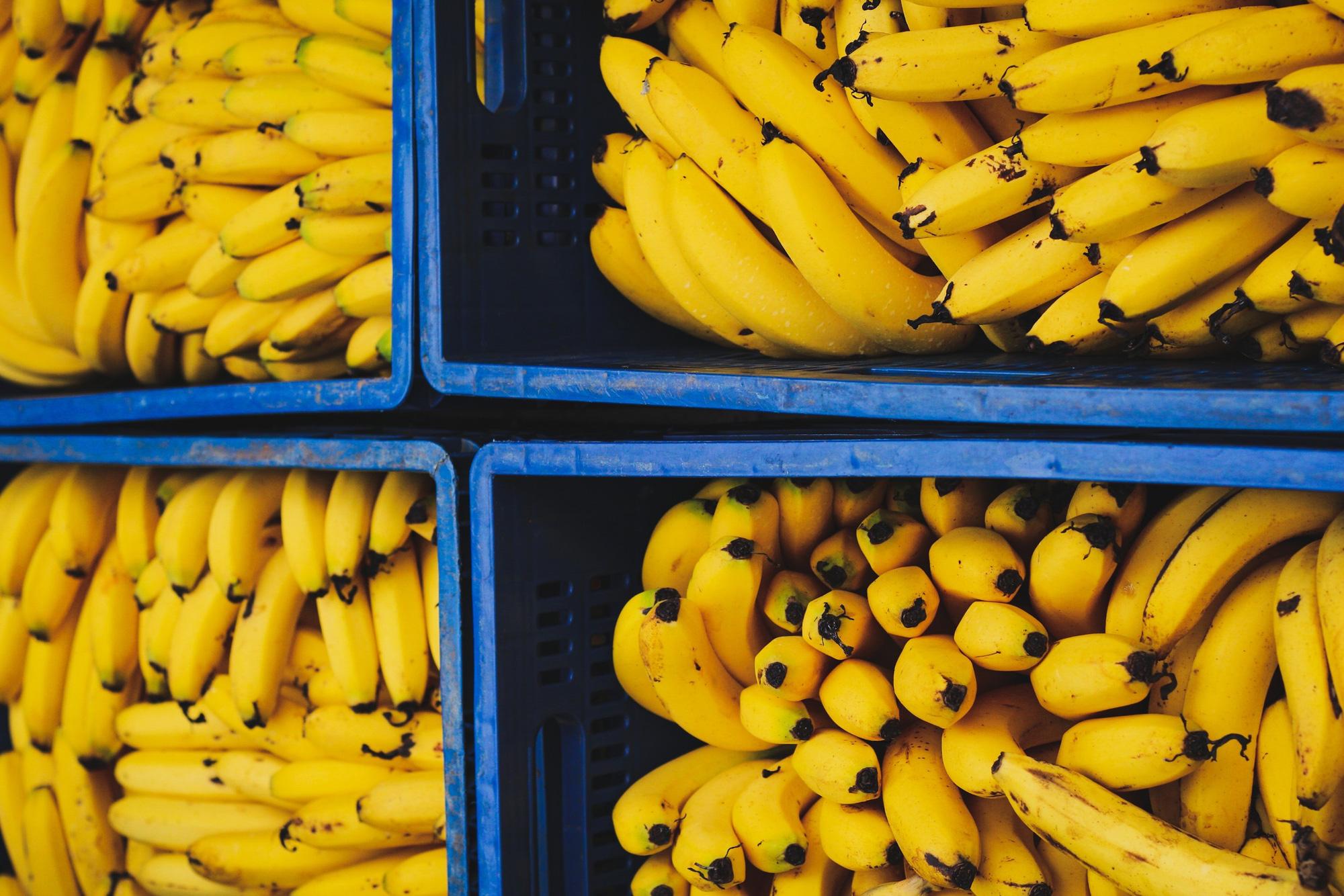 EU có nhu cầu cao về sản phẩm rau quả từ các nước đang phát triển - Ảnh 2.