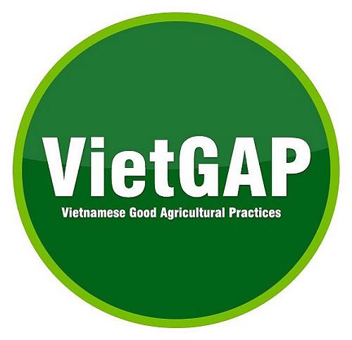 VietGAP là gì? Giấy chứng nhận VietGAP - Ảnh 1.