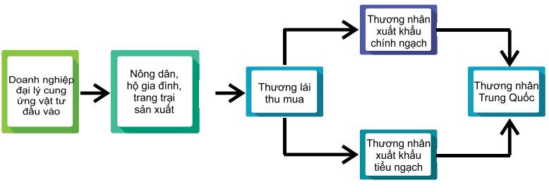 Tìm hiểu thị trường nhãn Trung Quốc - Ảnh 3.