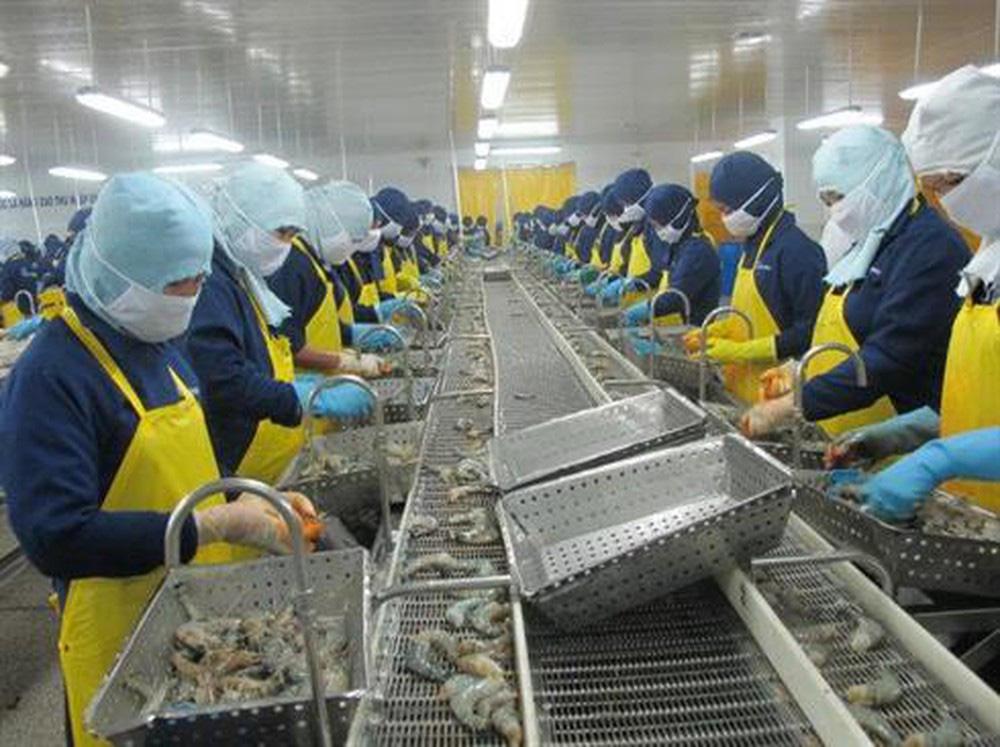 VASEP kiến nghị tháo gỡ khó khăn cho doanh nghiệp thủy sản vượt qua dịch COVID-19 - Ảnh 1.