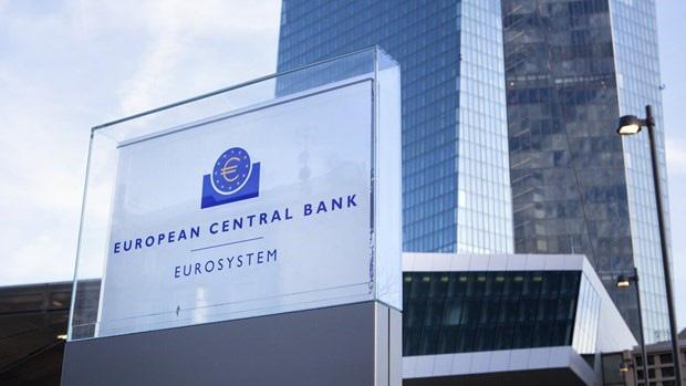 ECB kêu gọi Eurozone xem xét phát hành 'trái phiếu corona' - Ảnh 1.