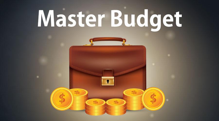 Dự toán tổng thể doanh nghiệp (Master Budget) là gì? Ý nghĩa và nội dung - Ảnh 1.