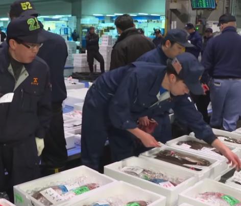 Dịch COVID-19 tác động thị trường thủy sản Australia và Nhật Bản - Ảnh 1.