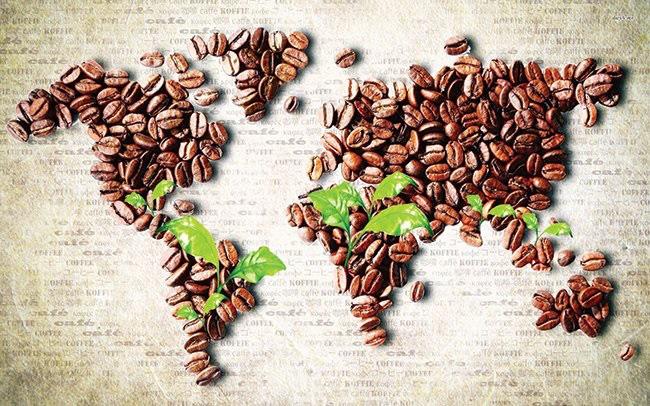 Dự kiến nhu cầu cà phê năm 2019 - 2020 tăng nhẹ nhưng có thể bị tác động tiêu cực bởi Covid-19 - Ảnh 1.