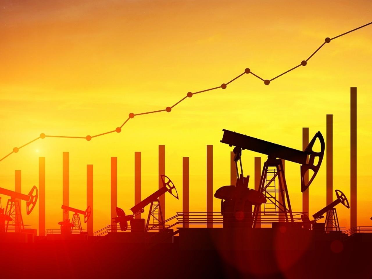 Lo ngại tác động tiềm tàng của dịch COVID-19, các chuyên gia của OPEC+ đề xuất giảm sản lượng dầu thô thêm 600.000 - 1 triệu thùng/ngày - Ảnh 1.