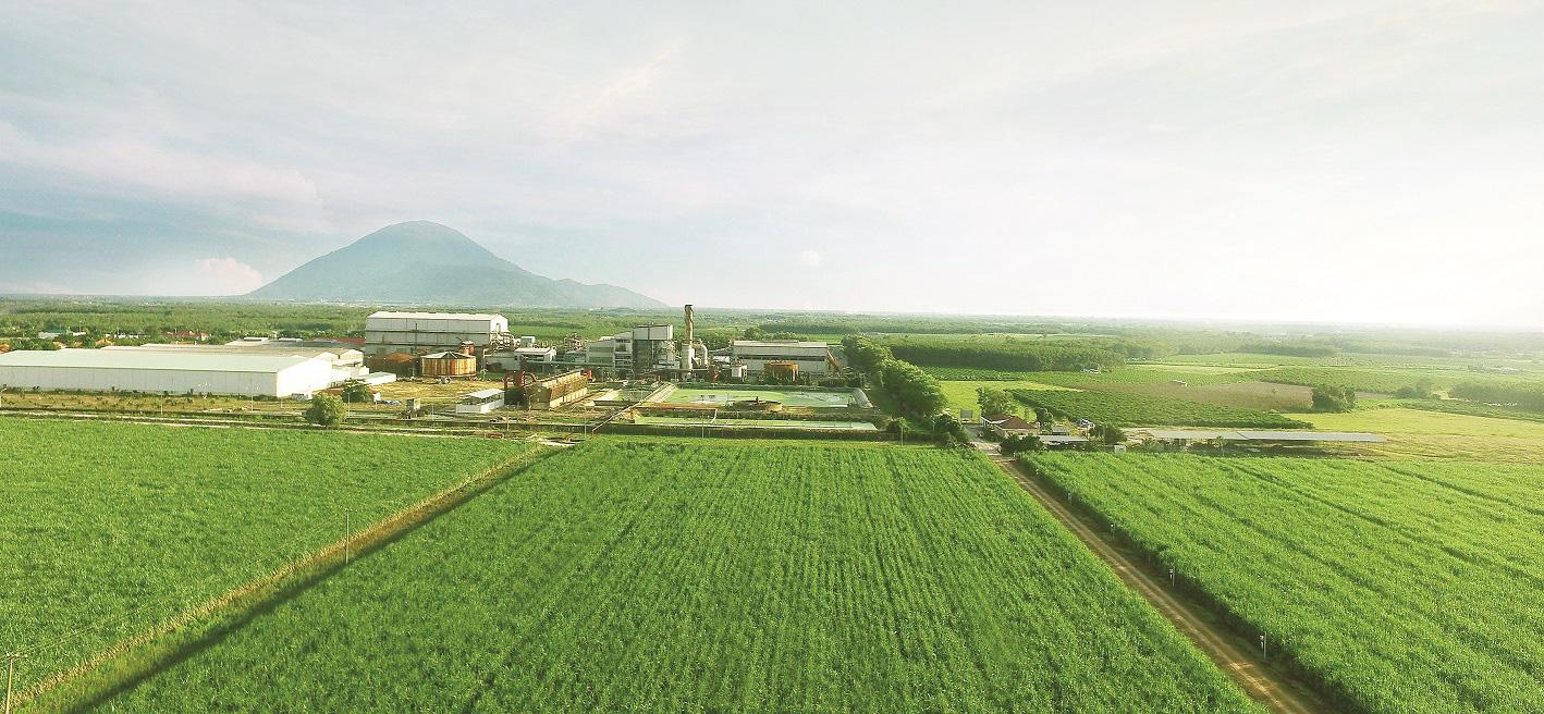 TTC Sugar hợp tác với NĐT chiến lược Hàn Quốc thông qua việc phát hành 760 tỉ đồng trái phiếu chuyển đổi  - Ảnh 1.