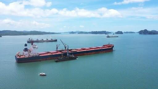 Giảm 'kịch sàn' giá hoa tiêu cho DN vận tải biển nội địa giữa bão COVID-19 - Ảnh 1.