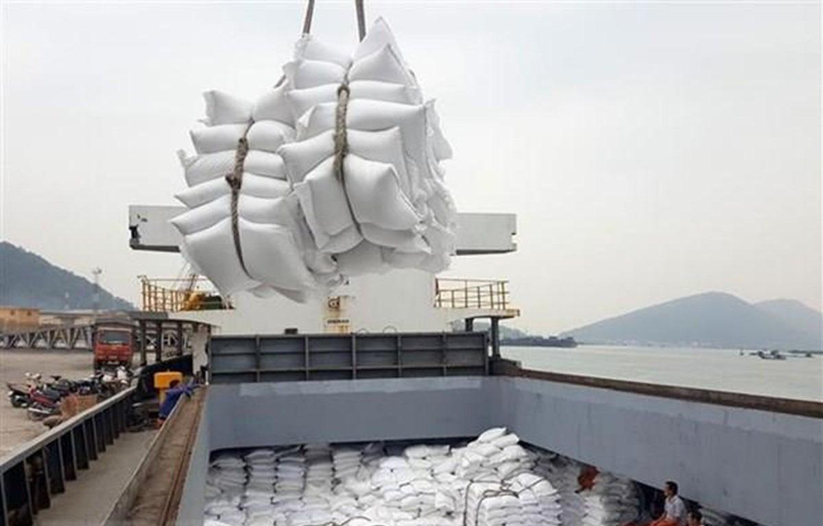 Không đăng kí được tờ khai hải quan, hàng trăm nghìn tấn gạo 'nằm cảng', doanh nghiệp khóc ròng - Ảnh 1.