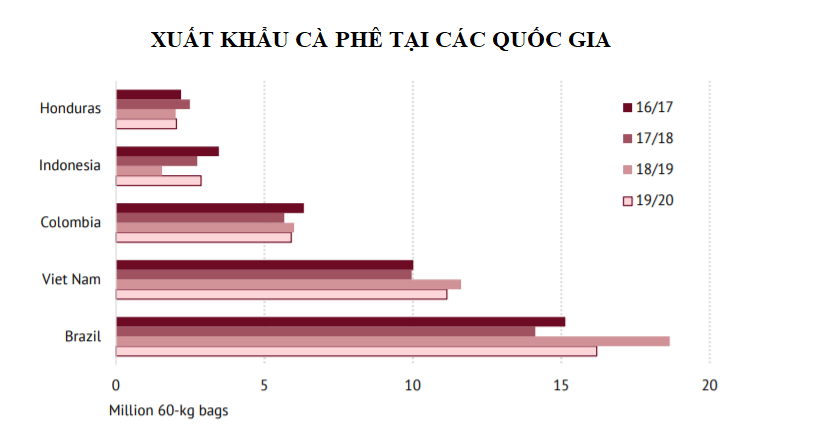 Xuất khẩu cà phê toàn cầu trong tháng 2 tăng nhẹ, tuy nhiên có thể bị tác động tiêu cực bởi dịch COVID-19 - Ảnh 2.