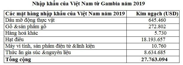Kim ngạch hai chiều giữa Việt Nam và Gambia năm 2019 tăng gấp ba lần - Ảnh 3.
