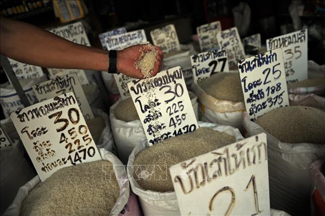 Giá gạo, lúa mì thế giới tăng cao do tác động của đại dịch COVID-19 - Ảnh 1.