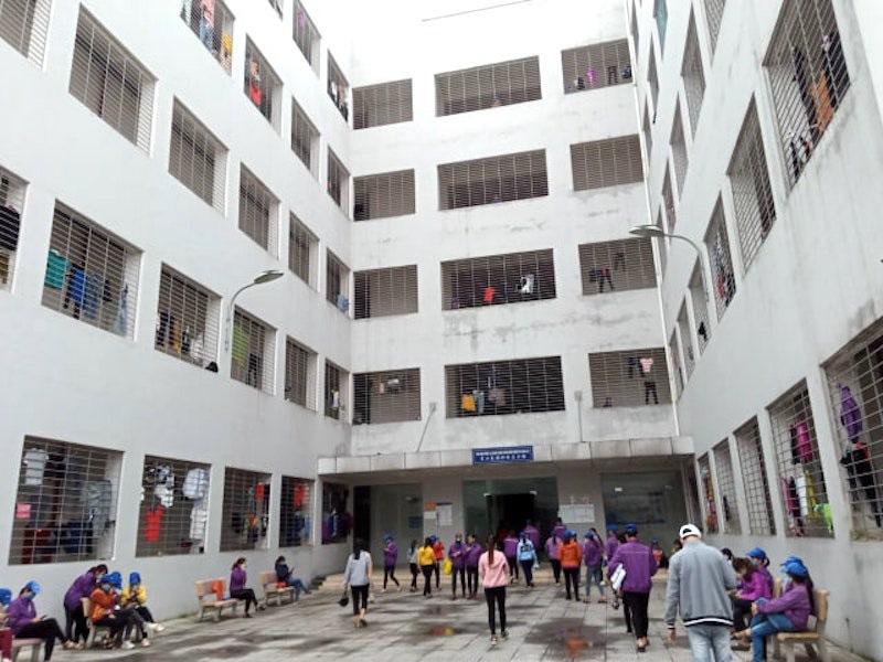 Lộ gần 700 người nước ngoài bất hợp pháp tại một doanh nghiệp Trung Quốc - Ảnh 7.