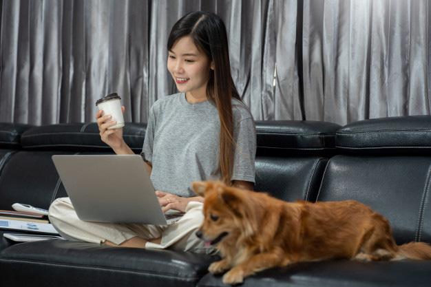 Cách kiếm tiền online khi cách li tại nhà vì COVID-19 - Ảnh 1.