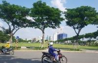 khong dau gia dat vang con khuyen mai tien thue dat