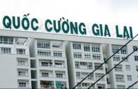 co phieu qcg co chuoi giam san sau thong tin ong cuong do la roi ghe dieu hanh