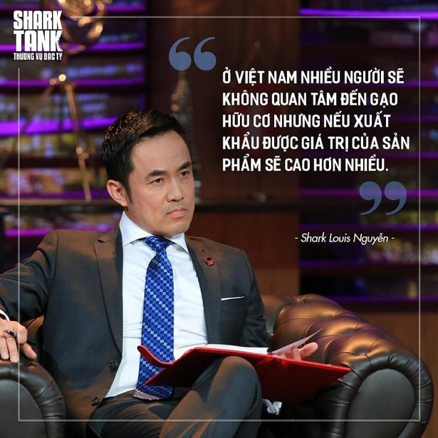 shark louis nguyen dau tu giong nhu mot cuoc hon nhan khong tim hieu ro thi khong the dong hanh lau dai
