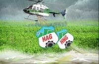 hagl agrico da ban hon 2200 ty dong trai phieu cho thaco no tang len gan gap doi von chu