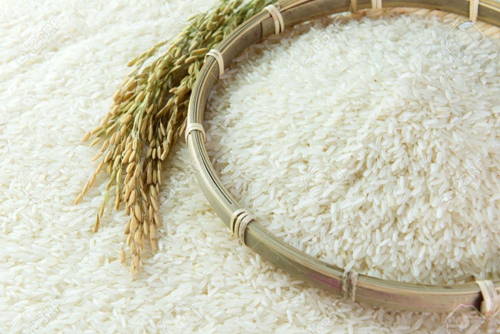 Giá gạo xuất khẩu của Việt Nam chạm đáy gần 10 tháng